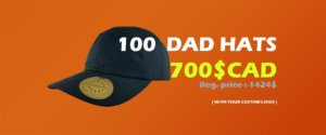 custom-dad-hats-special-promotion-vc300-valucap-sportsman-nationhats